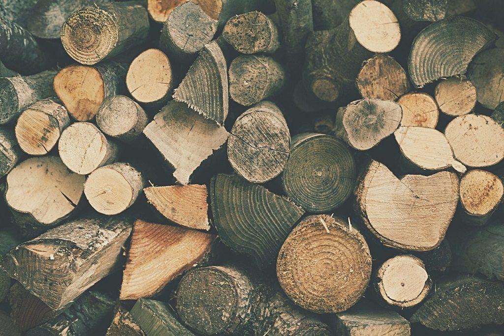 obnovljivi izvori energije-biomasa